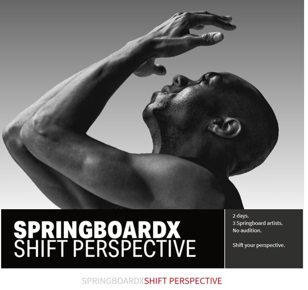 SpringboardX.PNG