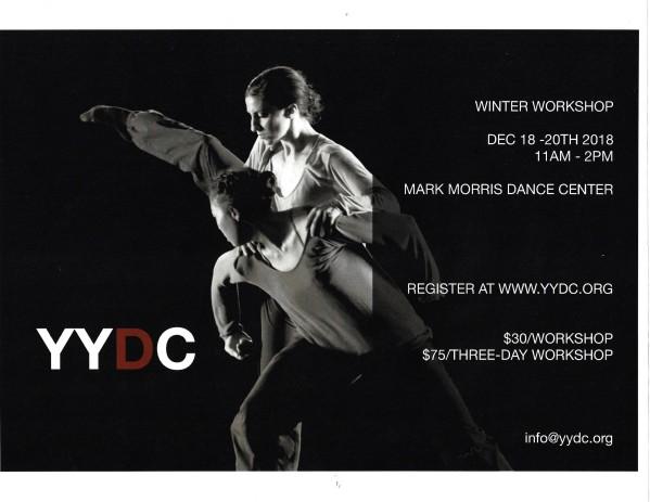 YYDC Workshop