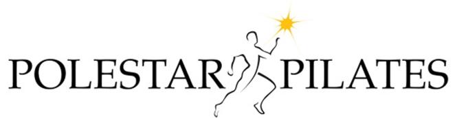logo polestar medium
